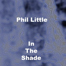 in the shade cover